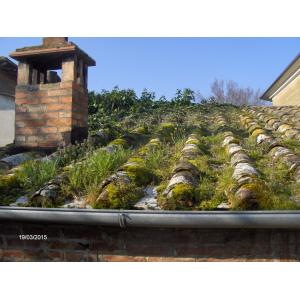 A.Z. Prefabbricati - Manutenzione dei tetti